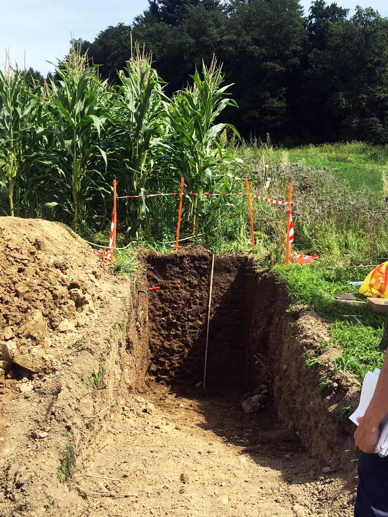 Boden Landwirtschaft