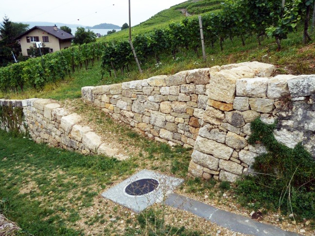 Trockenmauer nachher